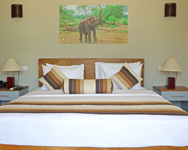 Spacious king size beds at Twenty-Two Weligambay