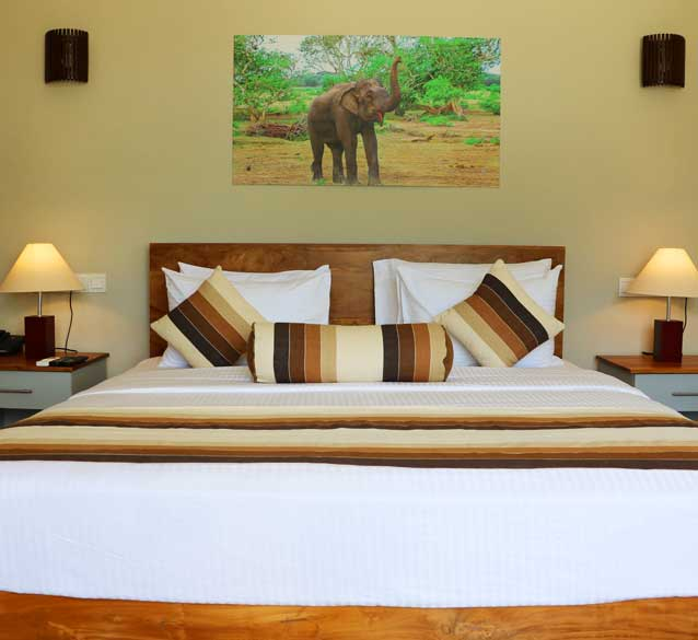 Deluxe Rooms at Twenty Two Weligambay
